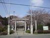 Takakurasakura